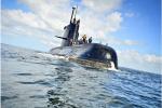 阿根廷调查潜艇失踪案:疑因采购次品电池致起火