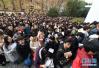 上海市公务员考试计划招录多少人?