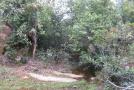 锦州一男子挖自家林地的土 咋被罚万元?