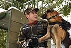 萌犬·奇兵·战友