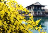 新型旅游纠纷一年增长三成 法官:约定条款尽量细化
