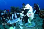 寄封信需深潜11米 全球最深海底邮筒在台启用
