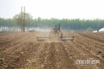 哈尔滨市补贴17亿元保春耕 资金一次性发放到农民手中