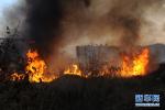 福州一居民楼起火或引燃燃气管道 消防员疏散民众