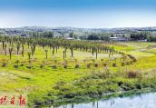 洛阳市新安县:推进河道整治 实现水清堤绿