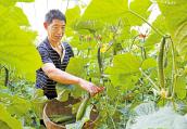 洛阳市:决战贫困 奔向小康