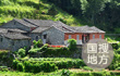 """把""""稳稳的家""""安在""""村台""""上 翟景磊带领村民在黄河滩区迁建"""