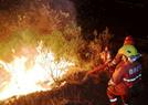 扑救攀枝花森林火灾