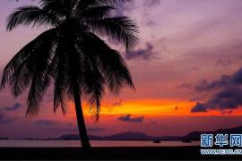 海南如何打造国际旅游消费中心?