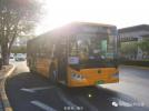 哈尔滨公交217路新车上线 原有车辆全部下线不再运营