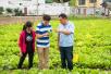 """一个农场五位博士当智囊 """"最强大脑""""助力镇海乡村产业发展"""