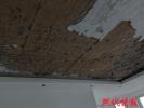 新房装修屋顶大面积脱落钢筋裸露,混凝土用手就能抠下