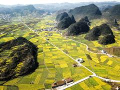 中国近半农户已实施卫生厕所改造