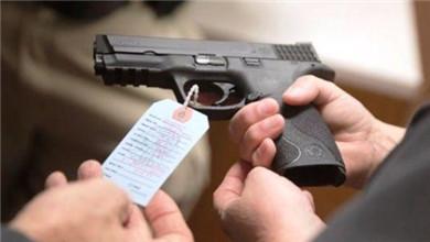 巴西总统签署政令放宽公民拥枪条件