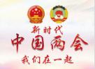 期待中国新政策为世界带来新机遇——海外专家学者关注2019年中国两会
