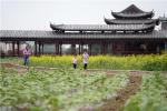 坝上张北:全域旅游富万家