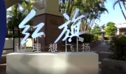 群英荟聚、大咖云集,红旗联手新华社强势开启2019中国企业家博鳌论坛!