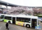 衡水城际公交最新发车时刻表来啦