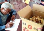 河南叶县:鸡苗送给贫困户 帮扶走上致富路