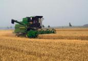 河南6月4日-5日大范围雨水来袭 对小麦收获影响较大