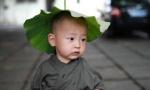 想捏脸!福州西禅寺超可爱小和尚萌一脸