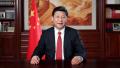 1953年6月15日 (癸巳年五月初五)|国家主席习近平出生