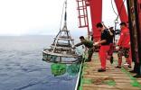 中国建成世界最大深海菌种库 系重要战略资源
