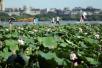 暖心!杭州首次向全市困难群众发放高温天防暑降温补助