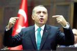 土耳其总统呼吁土裔选民在选举中勿支持德国执政联盟