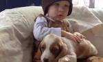 当暖心狗狗遇上萌娃