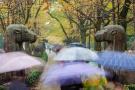 未来三天江苏将有明显的降水过程 今日局部地区有大雨
