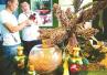中国农洽会 驻马店本地绿色农产品走俏
