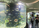 商场变身海底世界