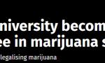 还有啥不能合法化?美高校推4年制本科大麻专业