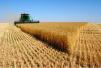2018年小麦最低收购价是多少?
