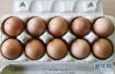一天一个鸡蛋 宝宝发育好