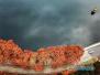 初冬的庐山:漫山的红叶尚在 落叶铺满路面