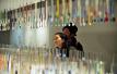 重庆市今年召回8.5万把儿童牙刷
