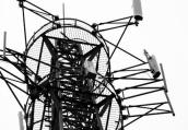 南通5村民信传言毁坏移动信号塔 构成损失近8万元