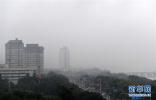 广西大雾笼罩 部分地区能见度不足1000米