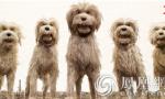 《犬之岛》获观众肯定 韦斯·安德森式美学受力捧