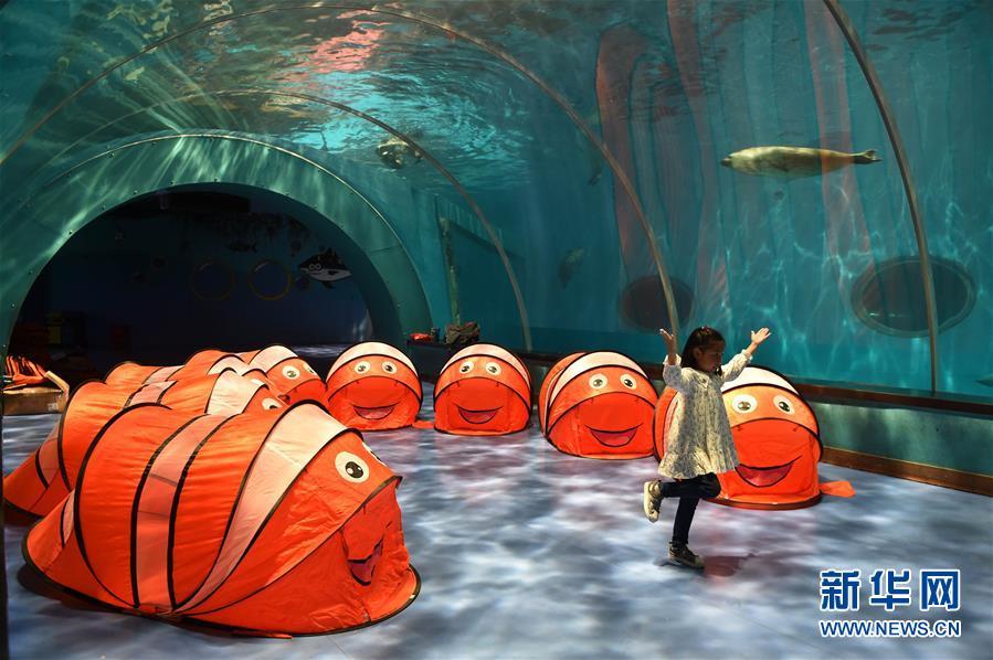 (环境)(10)世界海洋日:保护和可持续利用海洋