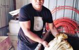 沈阳一村民翻修鱼塘挖出300斤太岁 一斤2万