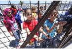 德国政府:用奖金鼓励难民离境初见成效