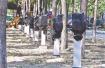"""北京蟹岛充电桩""""坟场""""续:正研究公用充电桩考核政策"""