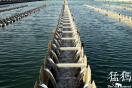 郑州东南部区域大范围降压供水 水厂原水供应不足所致