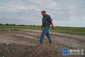 特写:洪灾与贸易争端夹击的春播季给美国农民带来太多艰难