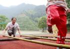 衢江区这个小学只有76个学生,校长用竹子给他们上课