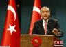 土耳其总统结束海湾国家斡旋之行