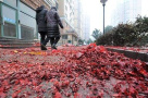 宁波中心城区禁放烟花爆竹区域划定,红白喜事开业庆典都不行